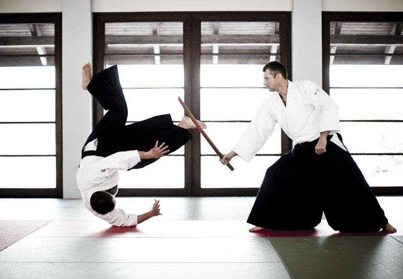 Aikido Images home - centrum aikido aikikai polska