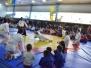 Pokaz Odessa turniej sambo z okazji Dnia Milicji Odessa 21.12.2014